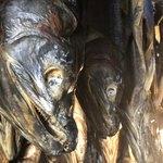 石田屋旅館 - 鮭のミイラ
