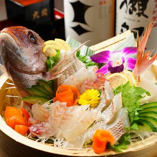 【瀬戸内鮮魚】厳選仕入れの瀬戸内鮮魚を豊富なドリンクと楽しむ