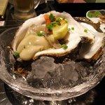 さかなや本舗 大町店 - 岩牡蠣 生 安いです。