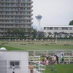 亜細亜的惣菜店 ガパオ飯 - 五稜郭タワーの前を競走馬達が通過