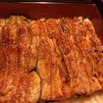Godaime Nodaiwa - 天然鰻 いかだ