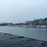 田子の浦港 漁協食堂 - 寒かった雨の漁港