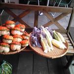 8811027 - 季節の野菜たち