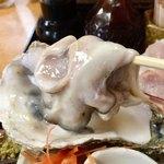 磯料理 光力 - でっかい生牡蠣