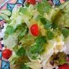 シャンティ デリ - 料理写真:パクチーサラダ