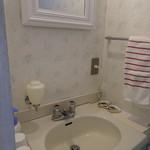 ペンションブルーポピー - お部屋の洗面