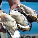 きまぐれDINING洋 - 料理写真:夏が旬の【夢牡蠣】