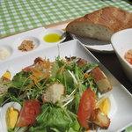 百菜 - サラダセット