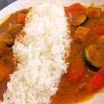 Spicy Cat -
