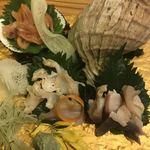 貝と炭火と日本酒 撓 - 貝刺し盛合せ