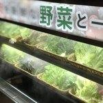 ヨプの王豚塩焼 熟成肉専門店 - セットは新鮮野菜取り放題♩