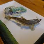 浜町かねこ - 稚鮎の天ぷら