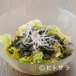 RAZAN 炭火焼肉 - チョレギサラダ