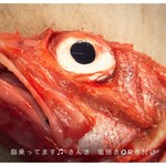 bisteria-odebu - きんき
