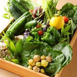 *生でも食べられる新鮮な無農薬野菜♪