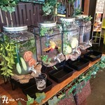 engawaかふぇ食堂 - Water bar