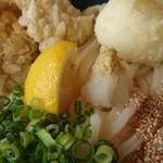 手打ち讃岐うどん 雲海 - 料理写真:麺はコシのある讃岐です