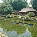 味司 野村 - 2018年6月 後楽園