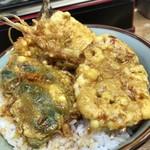 豊野丼 - 鯵・烏賊・車海老の三色丼 丼