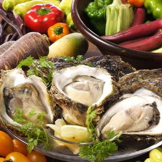 産地直送の瀬戸内生牡蠣!身がぷっくりして美味しいです!