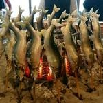 88855970 - ◎馬瀬川の鮎 大形(25㎝くらい) 焼きで2匹 → 囲炉裏で 立て焼き