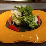 ワイン懐石 銀座 囃shiya - 朝採れ野菜のサラダ