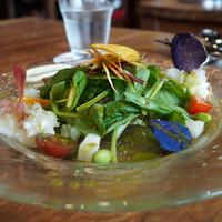 野菜レストランさいとう-新じゃがいも、蒸した赤と紫のジャガイモ、青じそドレッシングと自家製マヨネーズ