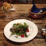 サルヴァトーレ - 料理写真:野菜サラダ