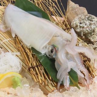 突き漁師が獲る【天然地魚】は、大自然が育んだ確かな味わい