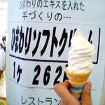 8906211 - ひまわりソフトクリーム