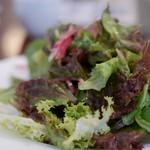 ぽるとカーブドッチ - 料理写真:グリーンサラダ