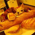 アンジェリック ベベ - 料理写真:フランスパンの上のスコーンが気になります