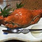 大漁屋 - 料理写真:今日一の愛知の茹でワタリガニ!
