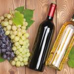メキシカンバーロスカボス - 赤&白ワイン  カルフォルニア産のカルロ・ロッシをご用意しております。 ボトルワインも多数ご用意が御座います。
