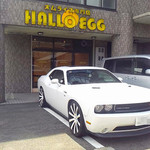 ハローエッグ - 愛車と