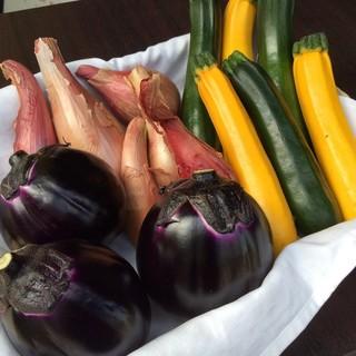 東北食材〜無農薬野菜、自然農法野菜、気仙沼の魚介〜