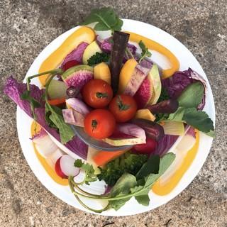 自然の恵みたっぷり◎身体と心に優しい料理をお楽しみください