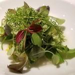ヒロト - ⑤ロースト野菜(おくら・スナップエンドウ)の上にフレッシュなマイクロリーフを重ねた野菜好きには嬉しい一品。       瑞々しい葉野菜は種類が豊富で食感が違って楽しいです。
