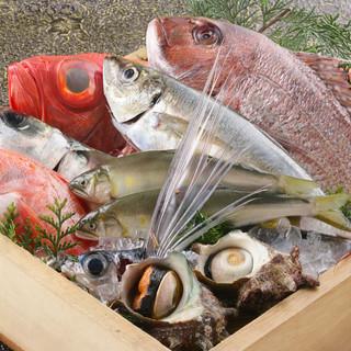 """""""豊浜産""""を中心に取り揃えた鮮魚は「お刺身」に「天婦羅」に!"""