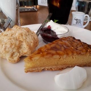 ナス・ショウゾウ カフェ - 料理写真:ケーキシエスタ(640円) 松の実のタルトとスコーン