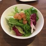 アクイーユ - 新鮮な野菜のサラダ‼️        スーパーのしおれた野菜ではありません。