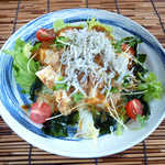 鯛介 - じゃこと豆腐のサラダ