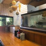 横田食堂 - カウンター席前には水槽が。