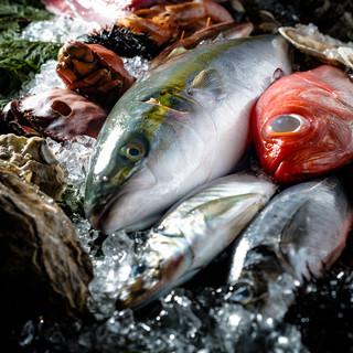 毎日直送!旬の魚を贅沢に味わう