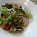 Le Cinque Kitahama - ステーキランチのサラダ