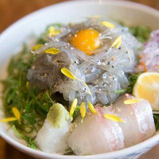 淡路島名物!生しらす丼を食す。