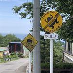 函館山展望台 山頂ショップ - カエル轢かないでね(≧∇≦)