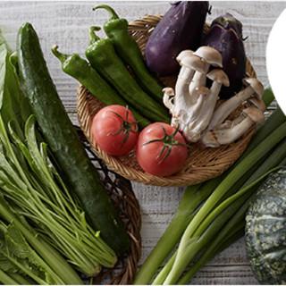 京野菜をはじめ全国より届く新鮮なお野菜