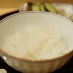 新ばし 笹田 - ご飯