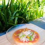 かま釜うどん - 料理写真:トマト摺りおろしうどん